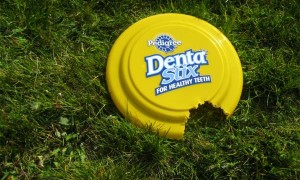 Dentastix Frisbee