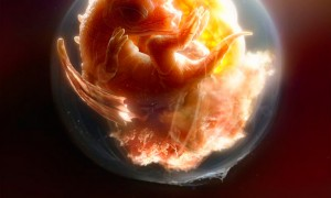 Dragon embryo